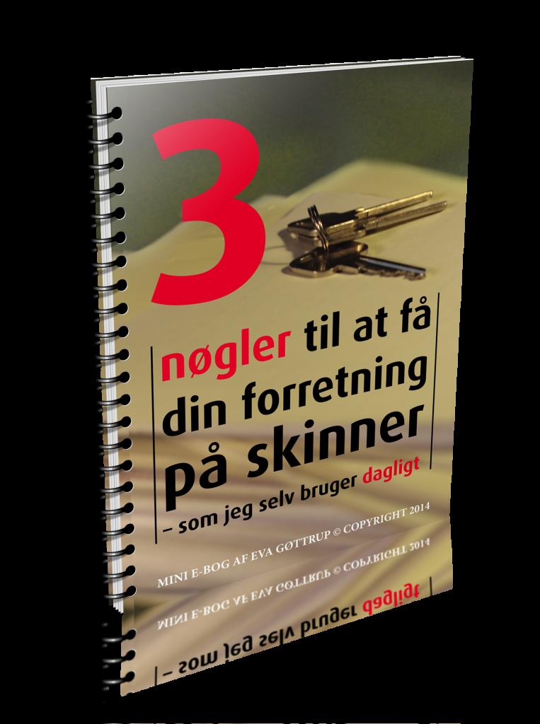 3 nøgler e-bog